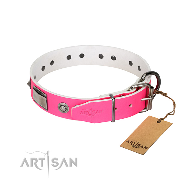 Stylish full grain natural leather collar with adornments for your doggie