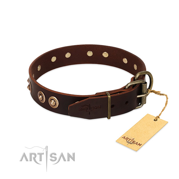 Strong embellishments on genuine leather dog collar for your dog