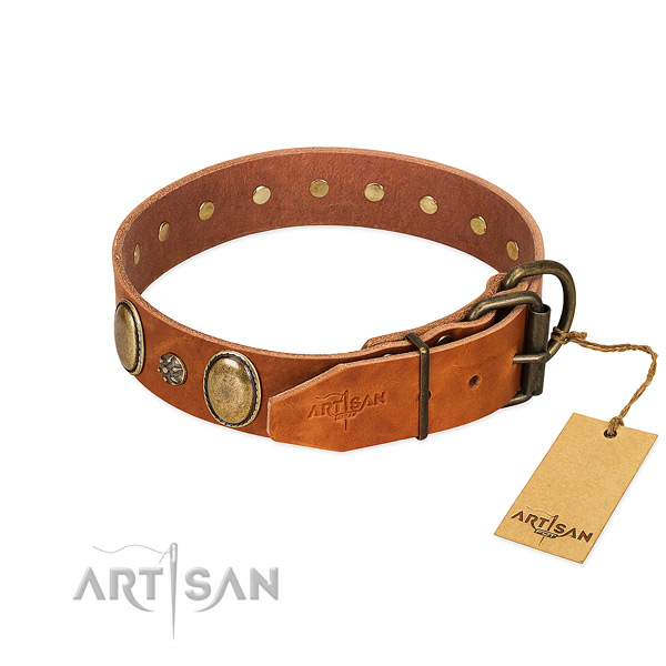 Everyday use quality leather dog collar