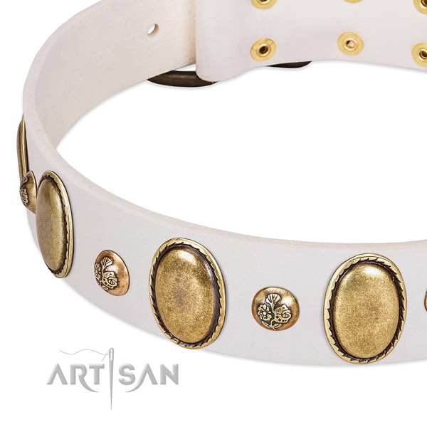 Full grain leather dog collar with exceptional adornments