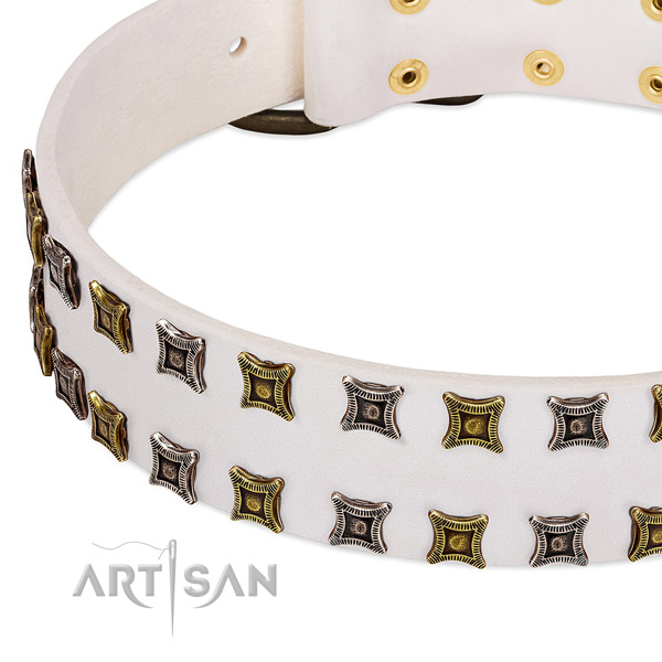 Flexible leather dog collar for your attractive doggie