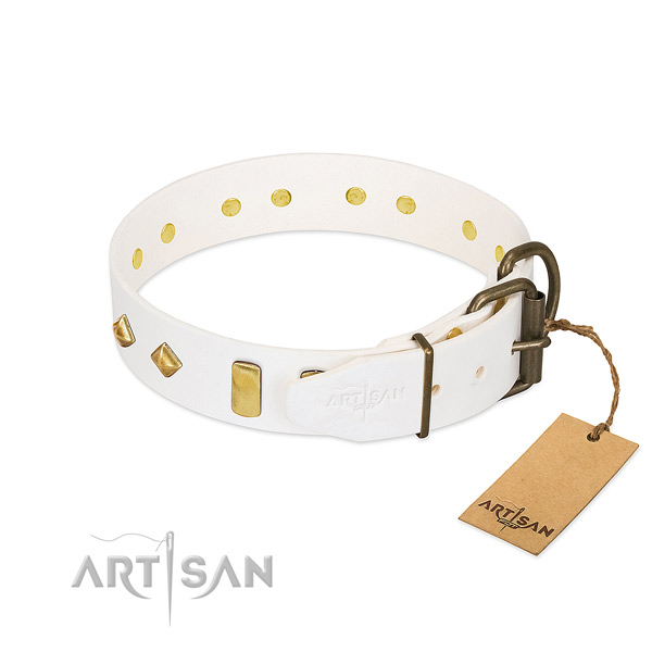 Reliable full grain leather dog collar with durable D-ring