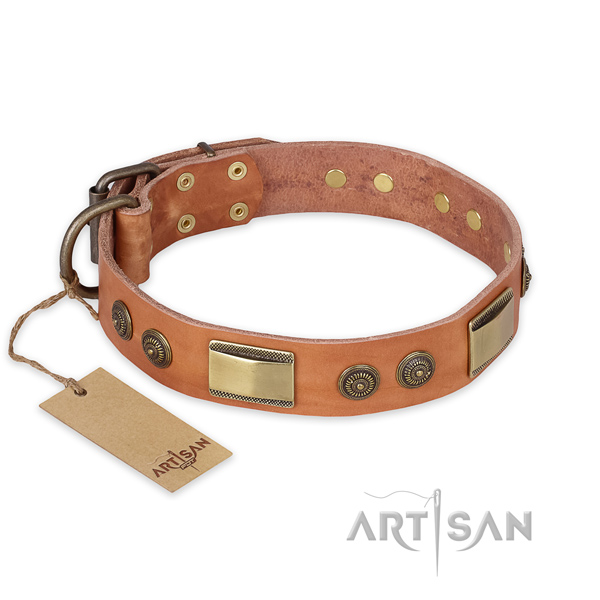 Handmade full grain natural leather dog collar for everyday use