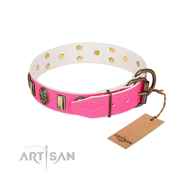 Corrosion resistant embellishments on full grain leather dog collar for your canine