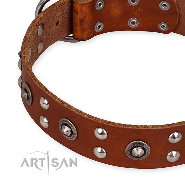 Genuine leather collar with rust resistant traditional buckle for your stylish four-legged friend