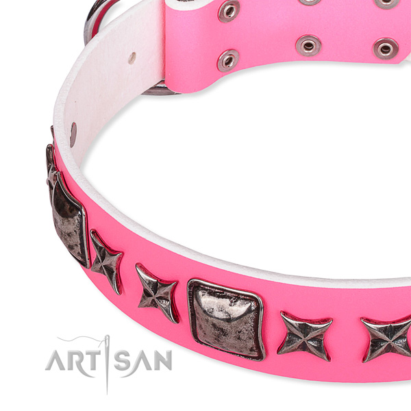 Daily use adorned dog collar of top notch full grain genuine leather