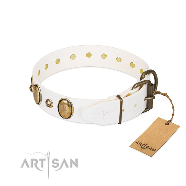 Daily walking leather dog collar