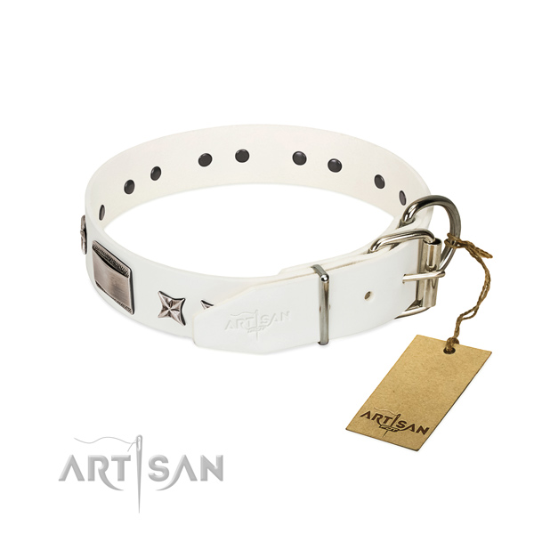 Impressive collar of full grain natural leather for your handsome doggie