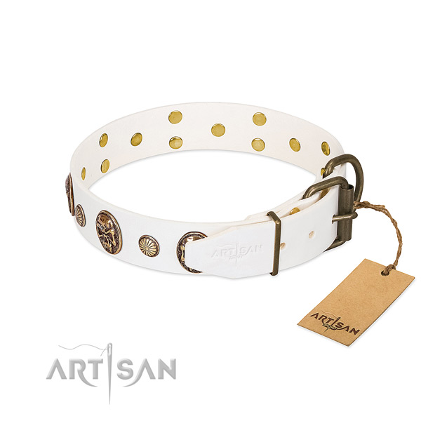Rust resistant hardware on full grain natural leather collar for stylish walking your doggie
