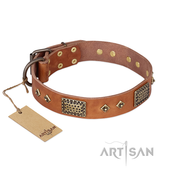 Amazing full grain natural leather dog collar for stylish walking
