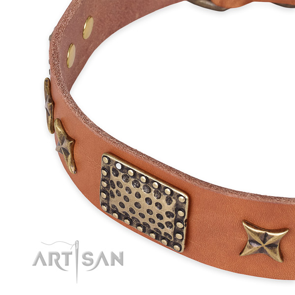 Full grain natural leather collar with corrosion proof hardware for your stylish doggie