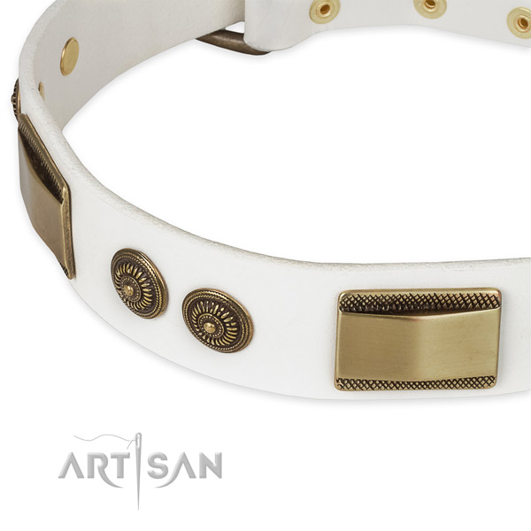 Strong adornments on natural genuine leather dog collar for your doggie