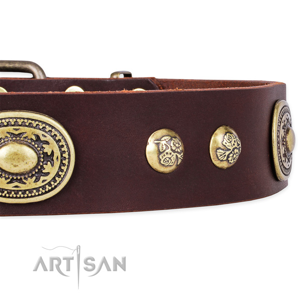 Best quality genuine leather collar for your handsome four-legged friend