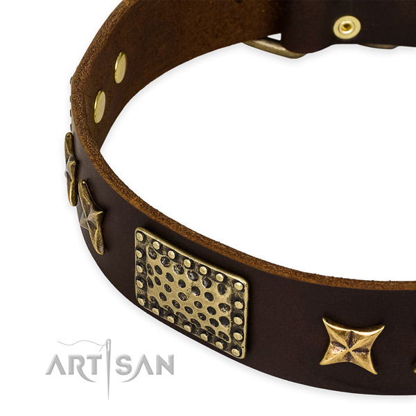 Full grain genuine leather collar with durable buckle for your lovely pet