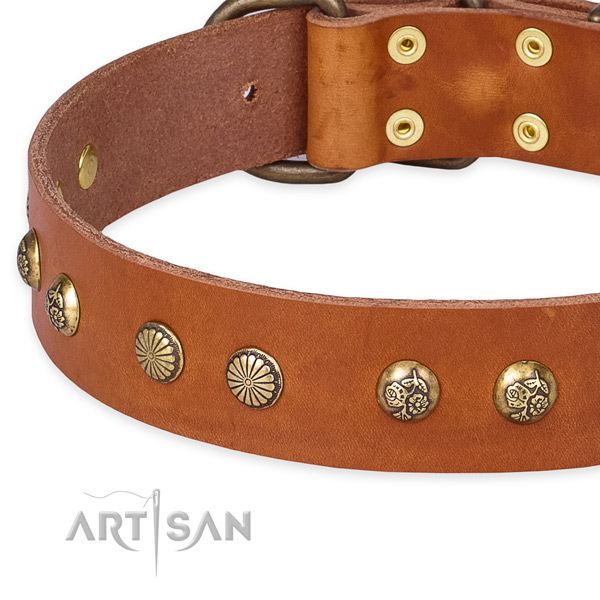 Leather collar with strong hardware for your lovely doggie
