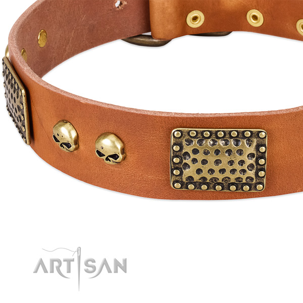 Corrosion resistant traditional buckle on full grain leather dog collar for your pet