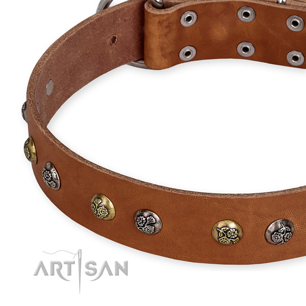 Leather dog collar with fashionable corrosion proof adornments
