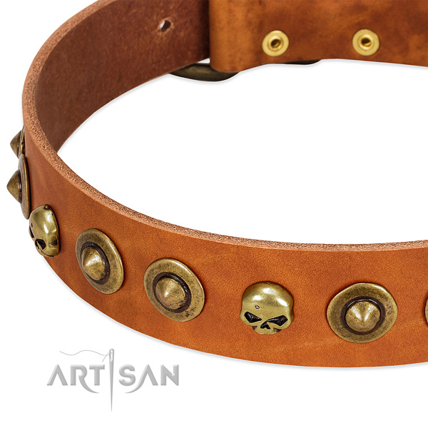 Amazing studs on full grain leather collar for your doggie