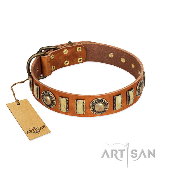 Top rate genuine leather dog collar with durable fittings