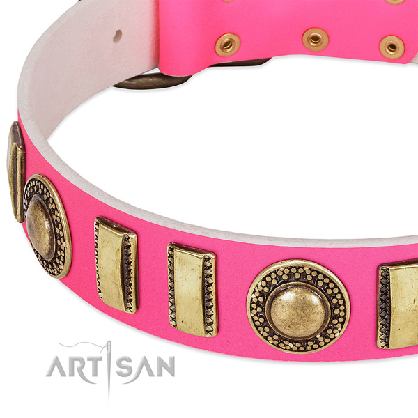 Top notch genuine leather dog collar for your attractive canine