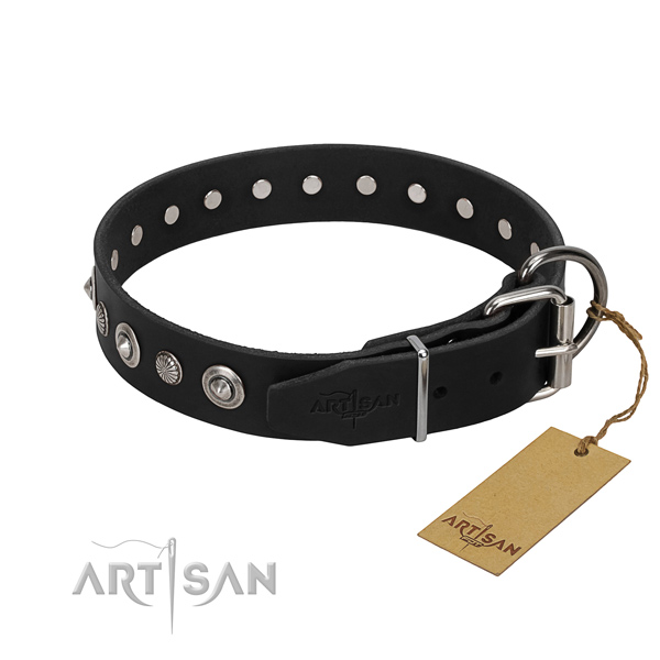 High quality natural leather dog collar with stylish adornments