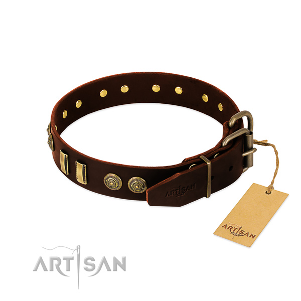 Rust-proof traditional buckle on full grain natural leather dog collar for your dog