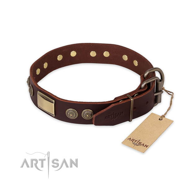 Rust resistant fittings on genuine leather collar for everyday walking your pet