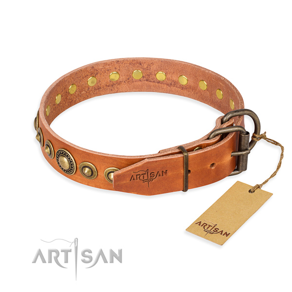 Strong full grain leather dog collar crafted for walking