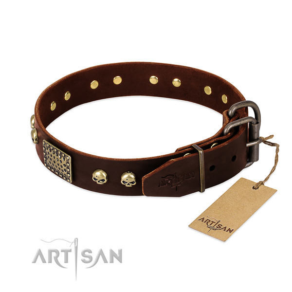 Corrosion resistant traditional buckle on daily use dog collar