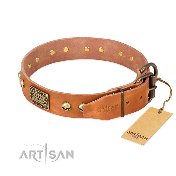 Durable hardware on basic training dog collar
