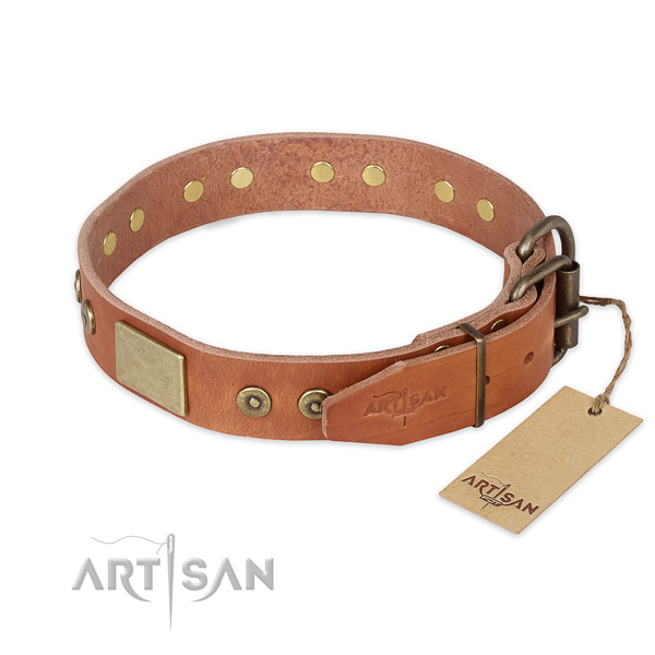 Reliable hardware on natural genuine leather collar for everyday walking your four-legged friend