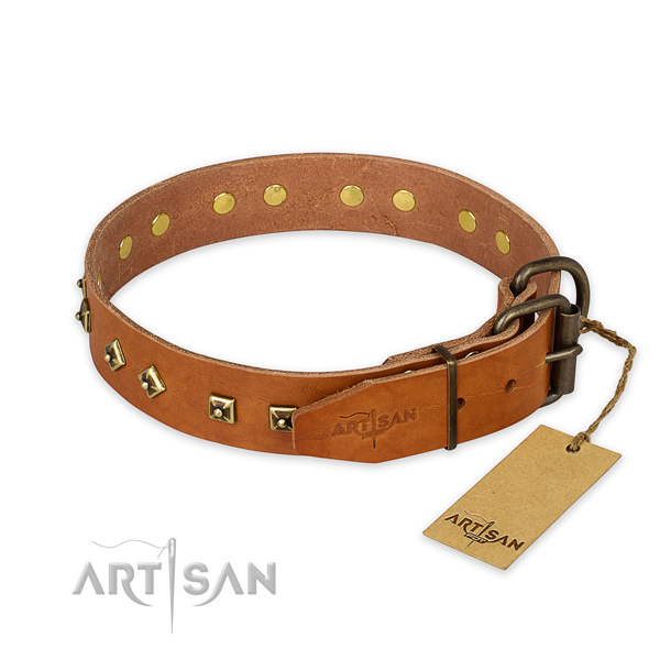 Rust resistant D-ring on full grain leather collar for daily walking your canine