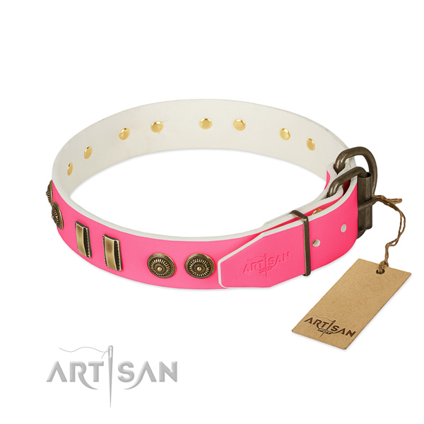 Reliable decorations on natural leather dog collar for your four-legged friend
