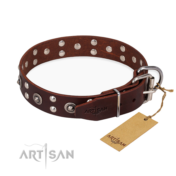 Strong traditional buckle on leather collar for your beautiful pet