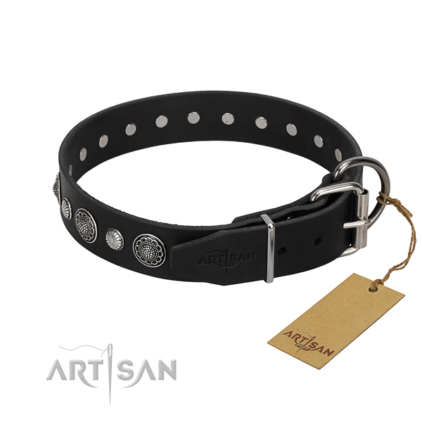 Top notch leather dog collar with remarkable adornments