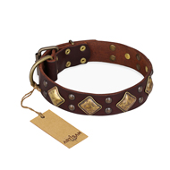 """Golden Square"" FDT Artisan Brown Leather Cane Corso Collar with Large Squares"
