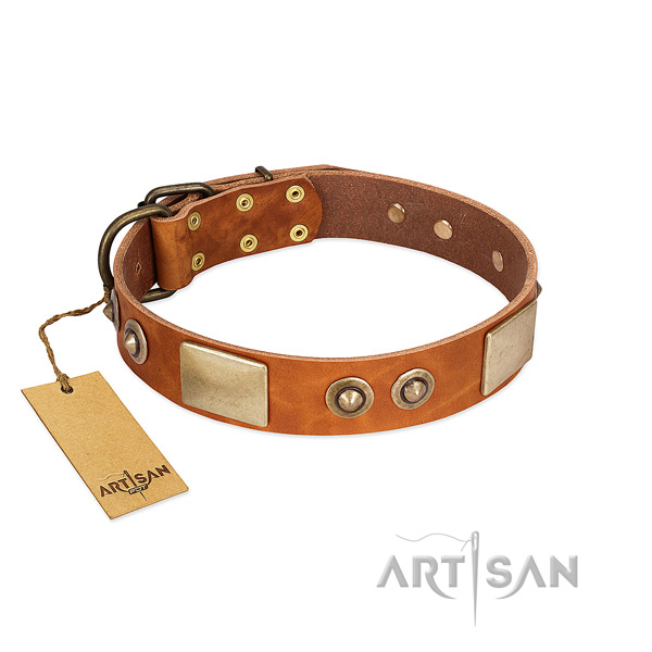 Adjustable full grain genuine leather dog collar for stylish walking your four-legged friend