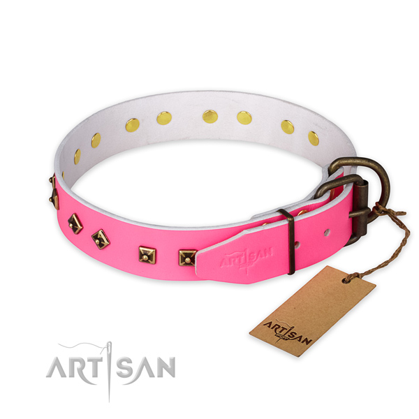 Reliable traditional buckle on leather collar for stylish walking your dog