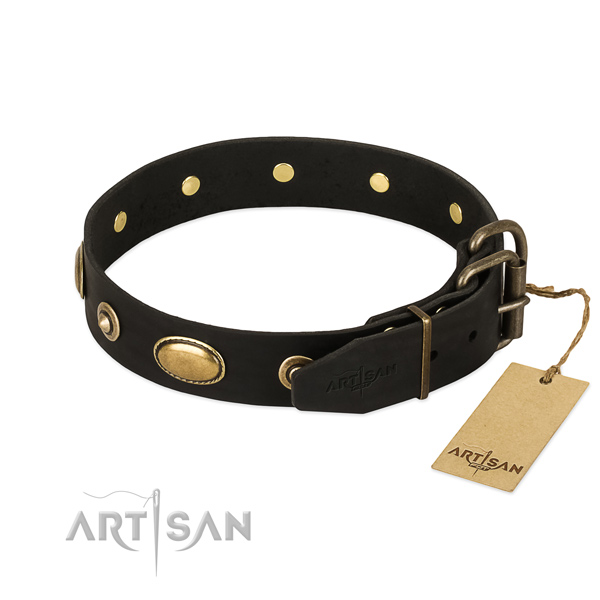 Durable traditional buckle on leather dog collar for your canine