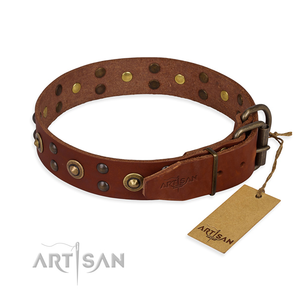 Corrosion proof hardware on leather collar for your attractive four-legged friend