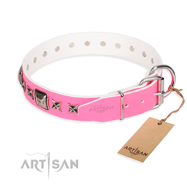 Top quality adorned dog collar of full grain natural leather