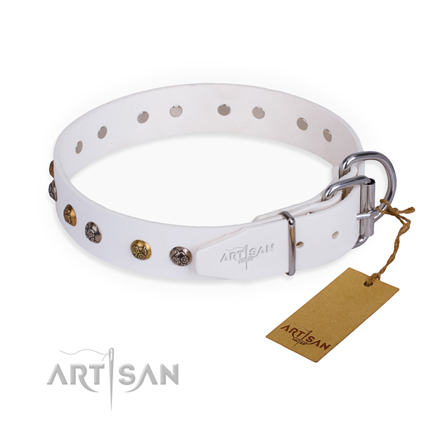 Full grain natural leather dog collar with remarkable reliable decorations