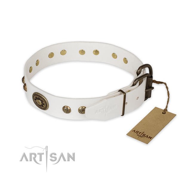 Corrosion proof D-ring on full grain leather collar for everyday walking your four-legged friend