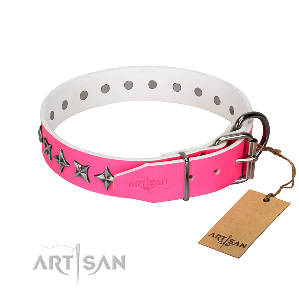Top notch genuine leather dog collar with exceptional embellishments