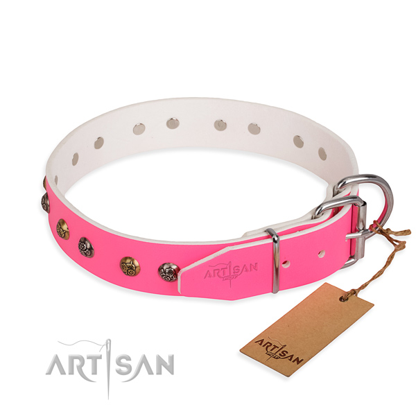 Natural leather dog collar with impressive rust-proof studs