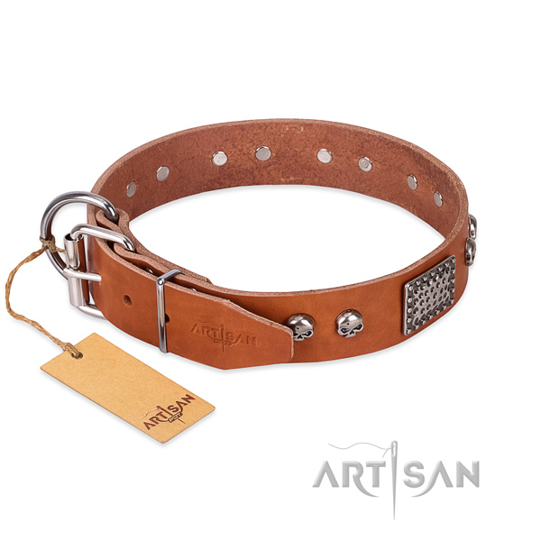 Rust-proof fittings on daily walking dog collar
