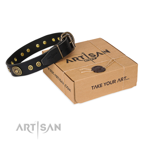Full grain leather dog collar made of flexible material with rust resistant hardware