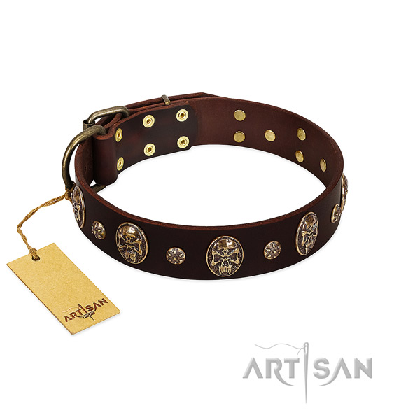 Top quality leather collar for your canine