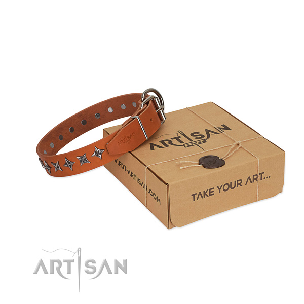 Stylish walking dog collar of durable full grain genuine leather with decorations