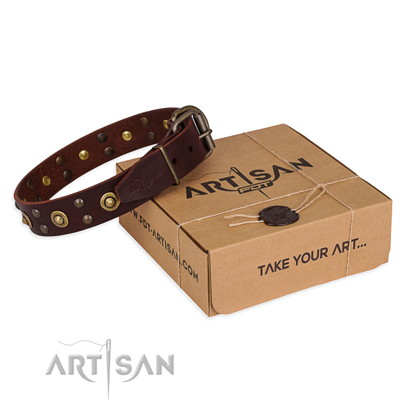Corrosion proof traditional buckle on genuine leather collar for your lovely four-legged friend